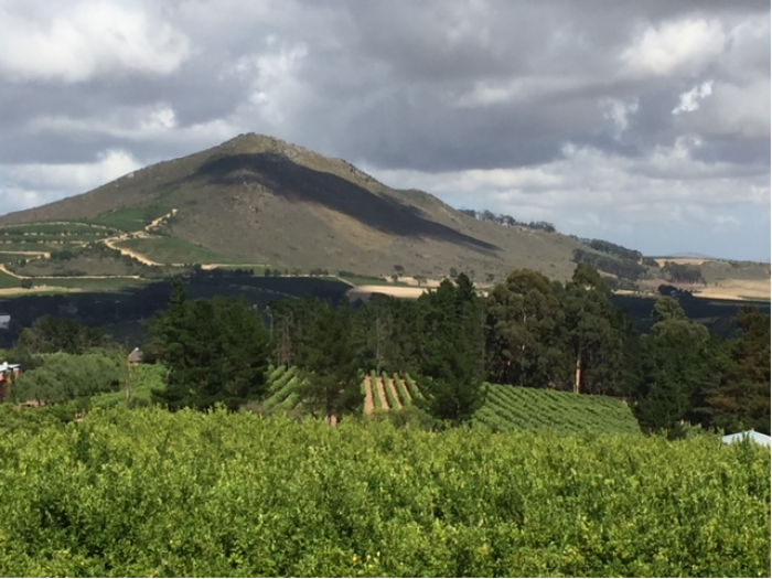 Dégustation vins étrangers 25 octobre 2019